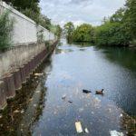 Echo Cube lutte contre la pollution de l'eau à Paris dans la darse du Rouvray