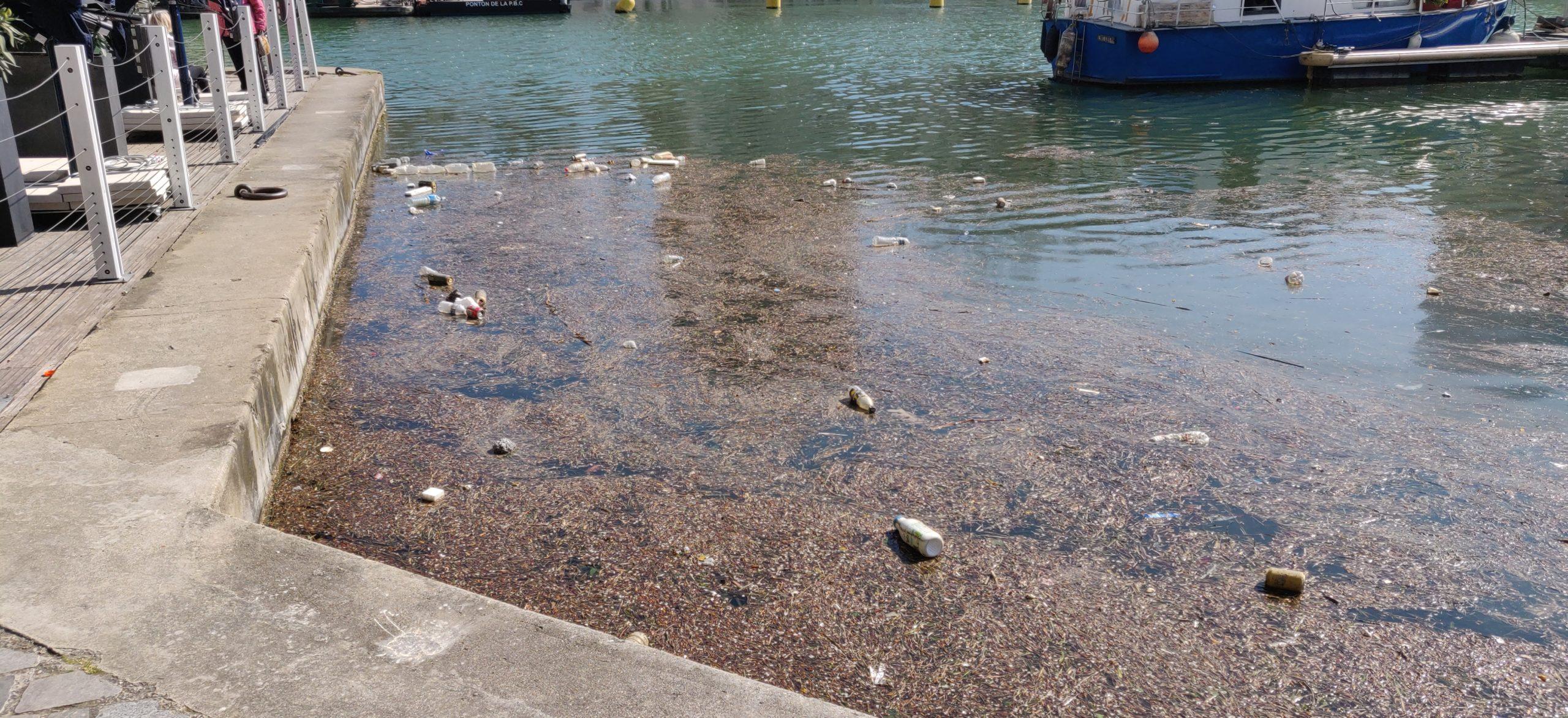 Déchets flottants à Paris