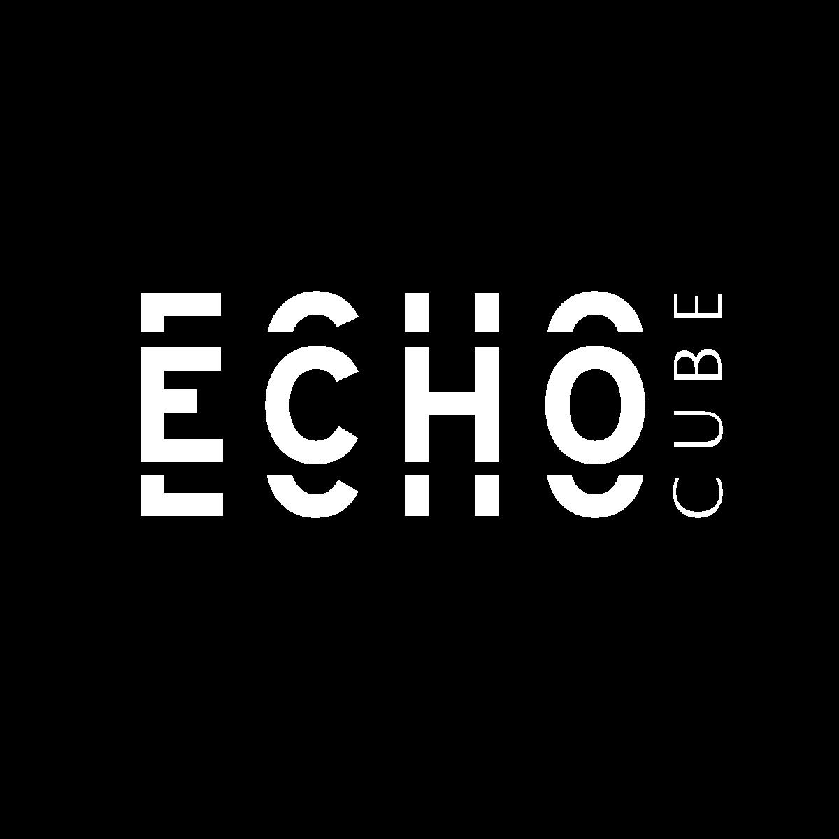 Logo echo cube blanc