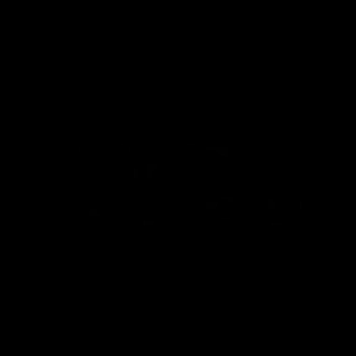 logo Echo Cube